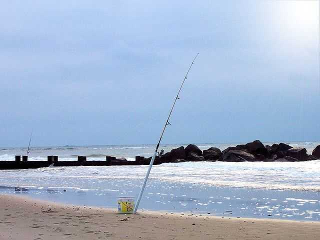 surf-fishing